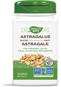 10401 - Astragalus Root