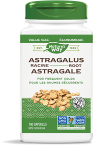 30526 - Astragalus Root