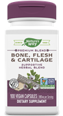 26 - Bone Flesh Cartilage