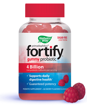 An image of a Fortify Gummy Probiotics bottle