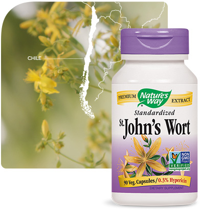 Nature's Way St. John's Wort bottle