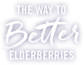 The way to better elderberries