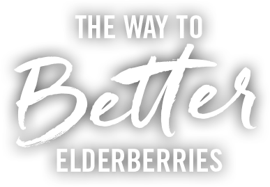 The Way to Better Elderberries text